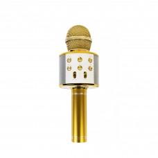Karaokė mikrofonas - kolonėlė su balso keitimo efektais, auksinis, WS-858